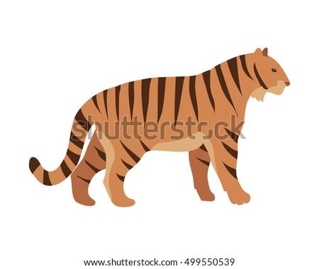 tiger panthera tigris cartoon