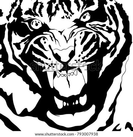 tiger roaring head