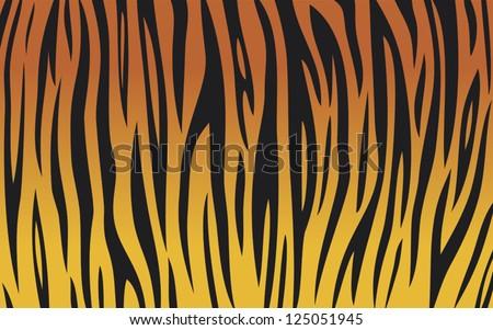 tiger skin background  animal