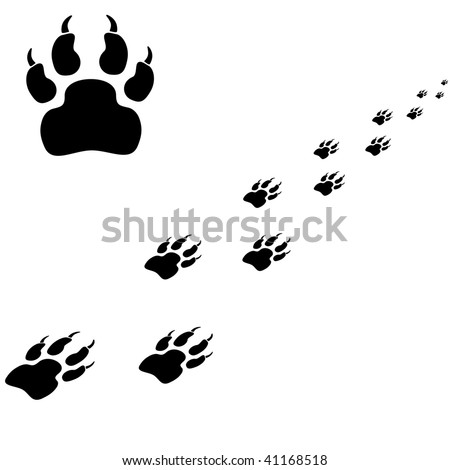 Tiger trace. Black vector illustration on a white background.