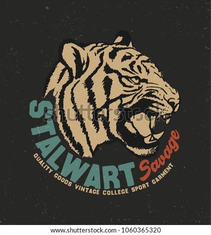 Tiger  typography, tee shirt graphics, vectors