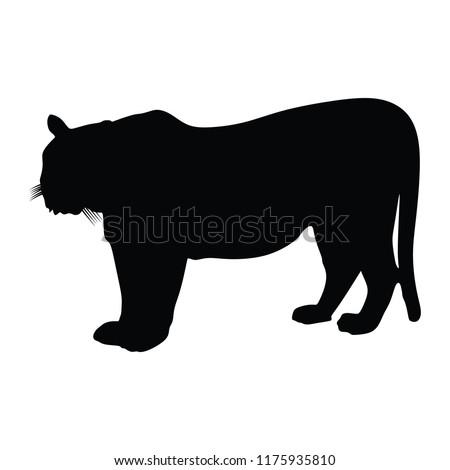 tiger vector silhouette