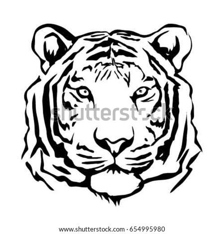tiger vector  sketch