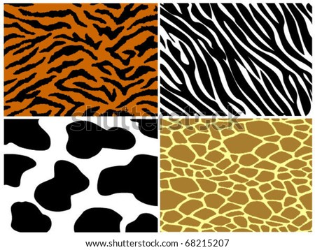 Tiger, zebra, cow and giraffe background.