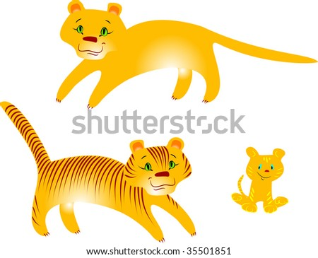 tigers and puma