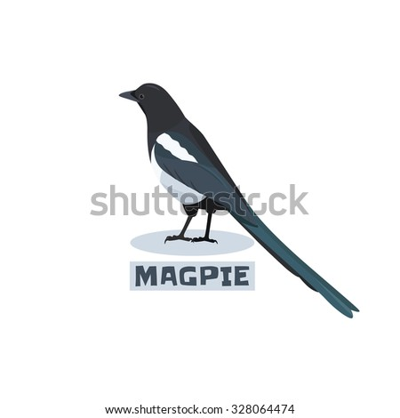 tilt magpie looks back with sign