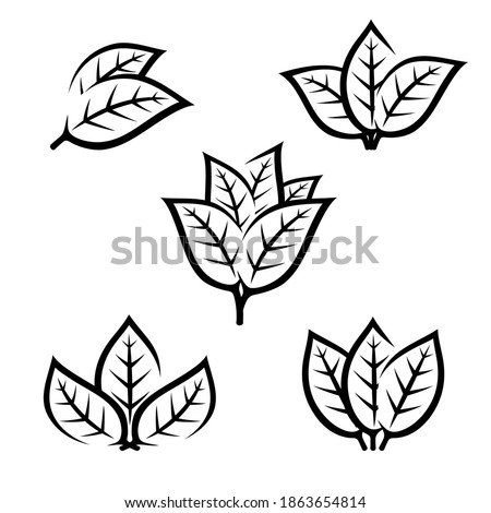 Tobacco leaf icons set. Collection icon tobacco. Vector Stock photo ©