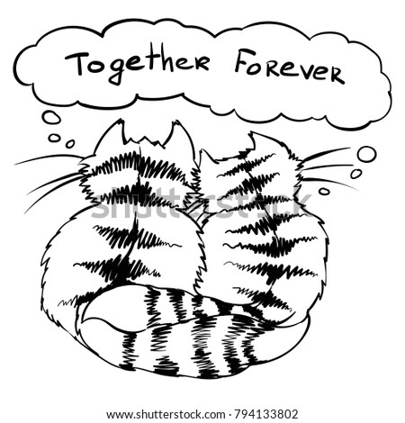 together forever cats love