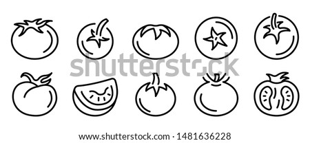 Tomato icons set. Outline set of tomato vector icons for web design isolated on white background