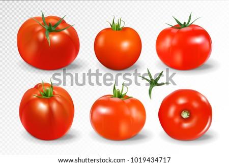 tomato set red tomato