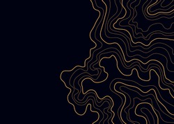 topographic map, abstract yellow height lines on black background vector
