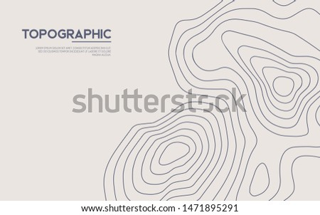 Topographic map background. Contour map vector. Vector, abstract height lines on white background. Foto stock ©