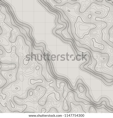 Topographic map background. Linear map. Vector Image EPS10 #1147754300
