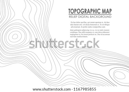 Topographic map contour background.  Line map with elevation. Geographic World Topography map grid abstract vector illustration.