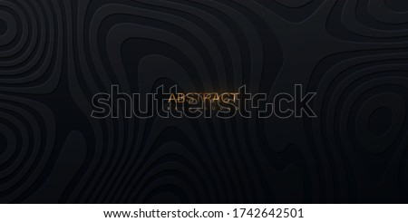 Topography relief. Abstract background. Vector minimal illustration. Liquid shapes. Outline cartography landscape. Modern poster design. Trendy cover with wavy black lines