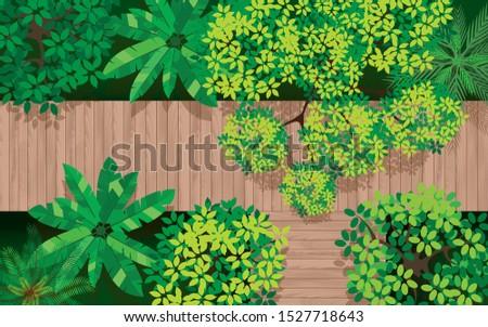 topview wooden bridge in forest