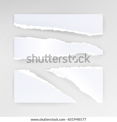 torn paper blank vector set of