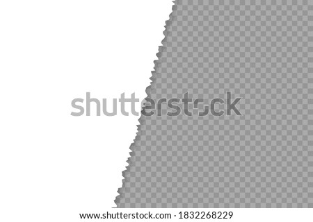 Torn paper edge. Infographic vector illustration. Teared, ripped photo, sheet or page texture. Collage of 2 images Stock foto ©