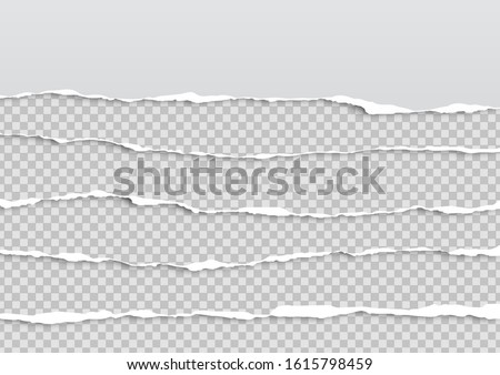 Torn paper on transparent background with space for text. Vector illustration.