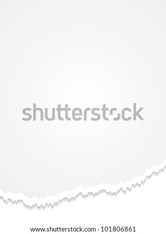 Torn paper. Realistic commercial vertical vector background.