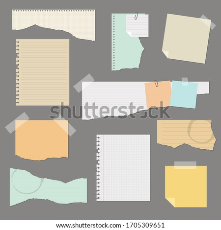 Torn paper set vector illustration isolated  Stock photo ©