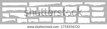 Torn paper set vector, layered. Vector illustration