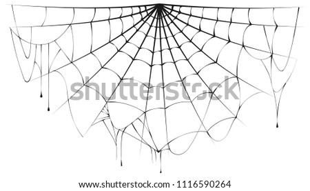 Torn semicircular spider web over white background. Vector halloween illustration #1116590264