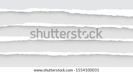Torn sheets of paper. Set of torn paper. Paper waste.Vector graphic