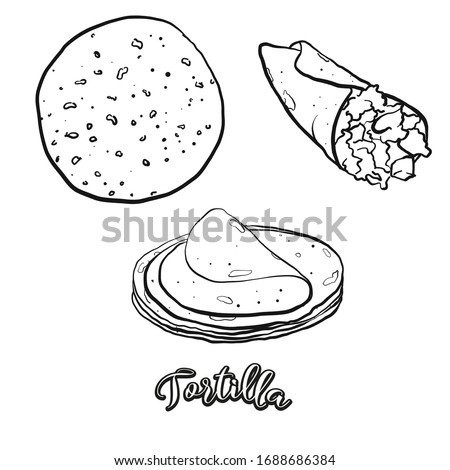 Tortilla food sketch separated on white. Vector drawing of Flatbread, usually known in Mexico. Food illustration series. Foto stock ©
