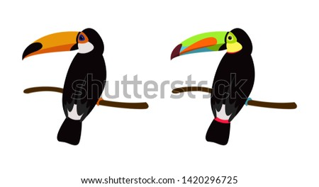 Toucan bird cartoon character. Cute toucan and rainbow-billed toucan flat vector isolated on white. Wild animal illustration for zoo and nature concept, children book illustrating – Vector