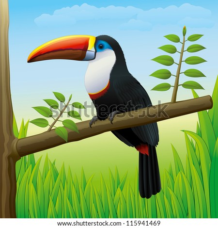 Toucan Bird Sitting on a Tree in Nature - High detailed Vector Gradients