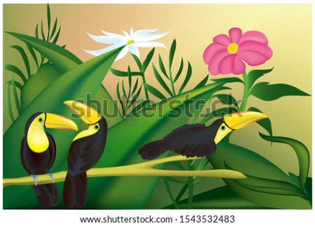 toucan birds perched on the