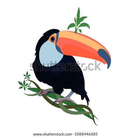 toucan perched on a twisty