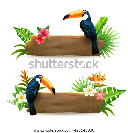 toucan sitting on wooden board