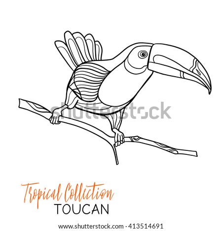 how to draw a toucan beak