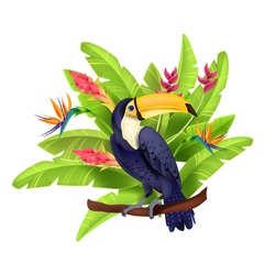 Toucan vector illustration, exotic tropical bird, banana leaves, paradise flowers, beak, purple feather. Amazon wildlife summer nature clipart, branch, Brazil parrot. Floral toucan vector concept