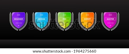 Tournament badge logo template for sports competition. Digital business certified technology icon. Vector illustration.