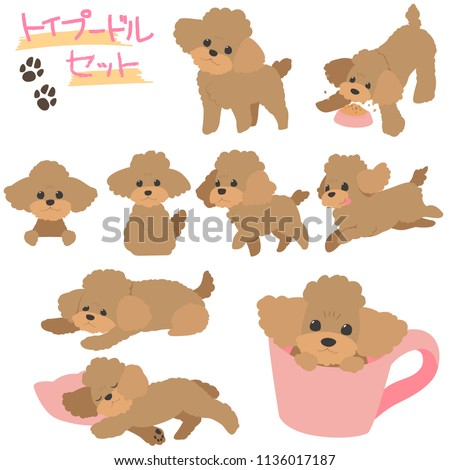 toy poodle illustset The character written in Japanese is