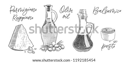 traditional Italian parmesan cheese, olive oil, pesto sauce and balsamic vinegar vintage engraving illustration with its name calligraphy