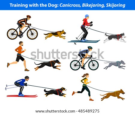 training exercising with dog