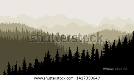 tranquil backdrop  pine forests