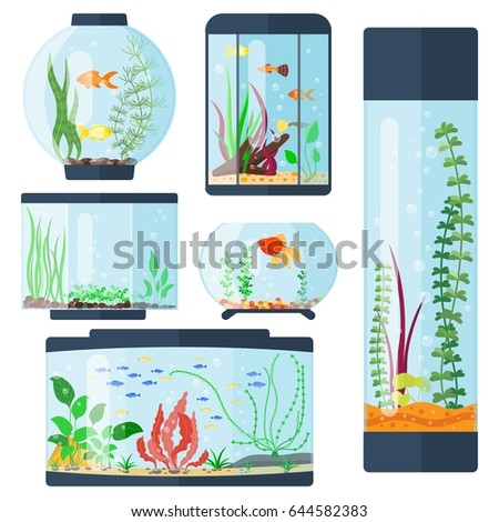 transparent aquarium vector