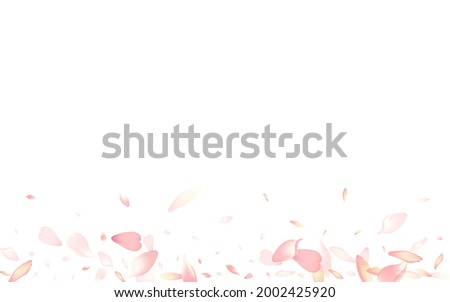 Transparent Cherry Petal Vector White Background. Purple Falling Lotus Petal Pattern. Apple Petal 3d Poster. Romantic Rose Petal Illustration.