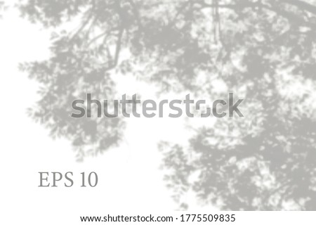 transparent natural tree