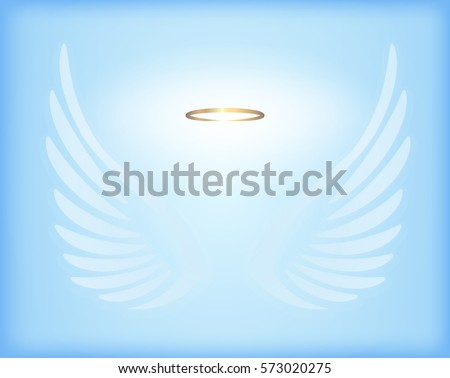 transparent white angel wings