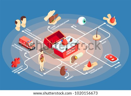 Transplantation isometric flowchart with donor heart in medical case for human organs anatomy dummy bone marrow liver eye icons vector illustration