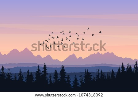travel landscape with