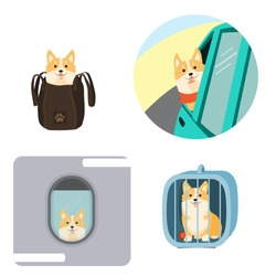 Traveling with dogs. Vector illustration of dog in a bag, in pet cage, carriage of dogs on aircraft and car.