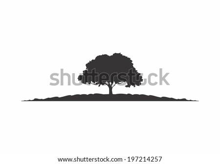 tree ストックフォト ©