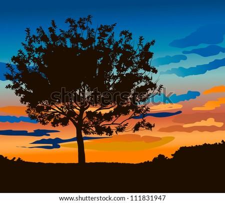 tree against sunset